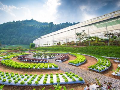 Intelligent pricing case study: Crop nutrition