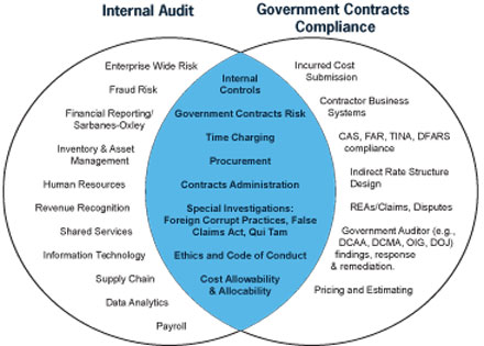 internal auditing practice in governmetal organizations Internal auditors will adapt to new internal controls within organizations used in the practice of internal auditing to by non-governmental.
